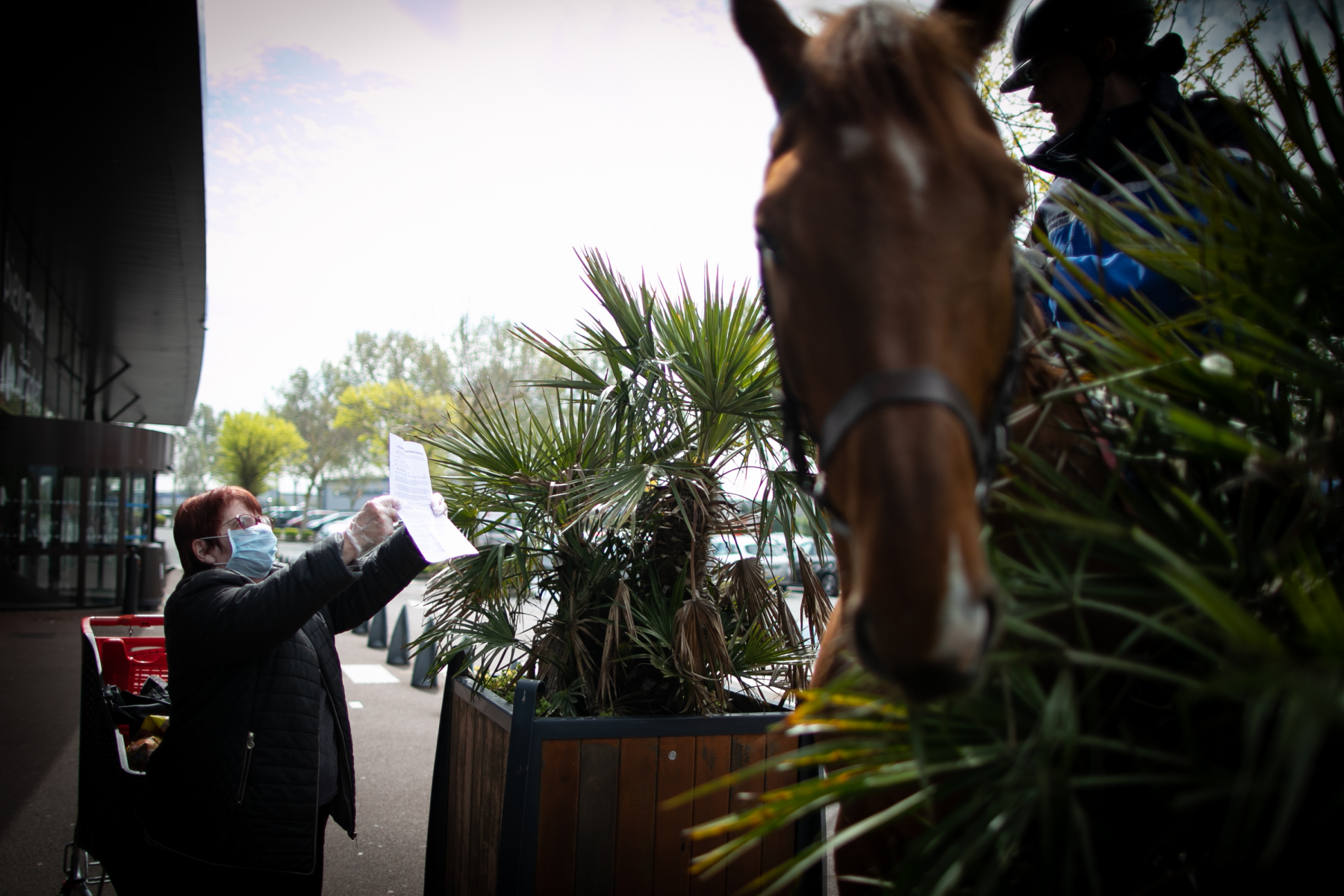 A woman shows her mobility document in front of a supermarket of Courseulles-sur-Mer, northwestern France, to Garde républicaine mounted gendarmes, on April 17, 2020, following a strict lockdown across France to stop the spread of COVID-19, caused by the novel coronavirus.